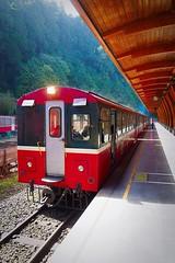 2015-10-25 10.11.42 (pang yu liu) Tags: travel station train 10 oct 阿里山 旅遊 alishan 2015 火車 火車站 十月