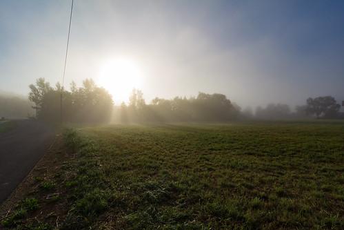 Der Nebel am Morgen 2