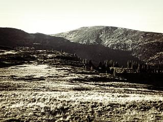 dh - sur les hauts-plateaux à l'automne