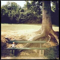 l´âme perdue (JoCo...) Tags: tree flickr bank luxembourg baum jos mystic iphone babytoy joco correia babypuppe moestroff iphone6 joscorreia wwwjoscorreialu