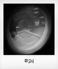 """#DailyPolaroid of 22-10-15 #24 • <a style=""""font-size:0.8em;"""" href=""""http://www.flickr.com/photos/47939785@N05/22776660073/"""" target=""""_blank"""">View on Flickr</a>"""