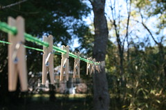 Underpinnings (FilmandFocusPhoto) Tags: canon sigma 1750 1750mm outdoor outdoors naturallight availablelight sunlight daylight sunshine green string clothesline cord clothespins tree sky photoshopfree noprocessing untouched unedited noedit unaltered metal