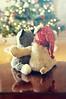 (flashpoint-70) Tags: stuffedanimals christmasdecorations christmas hugging affection love friendship filter gradient happiness hug cuddle christmastree