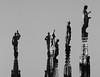 (B Plessi) Tags: duomo milano italia milan italy gotico gothique cathedrale statue landscape skyline blackandwhite winterlight light shadow