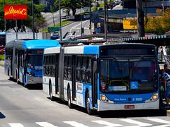 6 1608 Viação Cidade Dutra (busManíaCo) Tags: viaçãocidadedutra caio mondego ha mercedesbenz o500ua busmaníaco nikond3100 ônibus bus 公共汽车 автобус pasi బస్సు حافلة اتوبوس รถบัส autobús