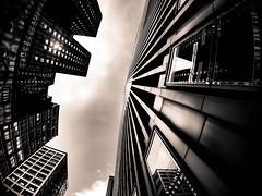 Chicago Sky (nd.dimitrov) Tags: chicago chicagobuildings buildings gotham city sky scrapers skyscrapers gothamcity