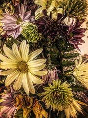 Tela's flowers (flowerweaver) Tags: graveside flowers spray funeral thefuneralsinger tela pioneer southwest roughandtumble pioneerwoman rancher buffalo bison cemetery century speedoflife