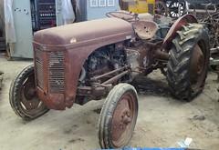 Ferguson TEH 20 (samestorici) Tags: trattoredepoca oldtimertraktor tractorvintage tracteurantique trattoristorici oldtractor