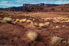 Inauguration Day (Bill Bowman) Tags: potashroad potashmine coloradoplateau deadhorsepoint moab utah