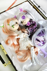 Barasuishou Ƹ̵̡Ӝ̵̨̄Ʒ Kirakishou (Ashe Room) Tags: ashe room ashesroom pullip doll 16 jun planning groove wig design designs japan anime manga custom dal taeyang kawaii love cute kirakishou barasuishou case rozen maiden gorgeous dream alice game