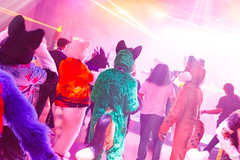 _MG_0699 (Tiger_Icecold) Tags: confuzzled cfz2016 cf2016 furcon furry convention fursuit birmingham party deaddog ddp deaddogparty