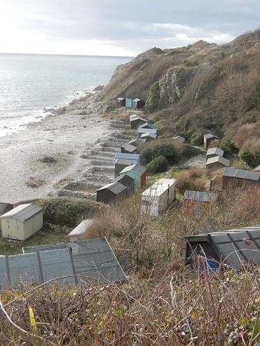 Beach colony