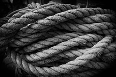 Rope (sisrig) Tags: hafen 16mm tau moire alpha blackwhite rope a6000 fehmarn sony haven