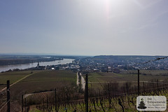 Rhein, St. Kiiianskirche und Nierstein