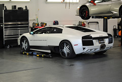 Show Me Murcie (Infinity & Beyond Photography) Tags: lamborghini murcielago exotic white sports car supercar florida exotics cars supercars