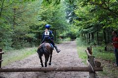 Doorn (Steenvoorde Leen - 2.3 ml views) Tags: horses horse jumping cross doorn pferde pferd reiten manege paard paarden springen 2015 utrechtseheuvelrug hindernis sgw arreche manegedentoom
