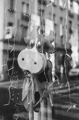 70560013 (jana_markinen) Tags: paris city life people children summer winter automn spring crepe pancake food street urban back white canal fashion monument park cafe drink window shop sing neon bank quai rue ville romantic picturesque interesting autumn reflection france blackandwhite moment quiet atmosphere flower river windowshop fujicolor ilford