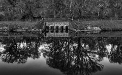 Inlet - The River Lochy (GOR44Photographic@Gmail.com) Tags: trees bw reflection water river mono scotland highlands fujifilm lochy xf1 gor44