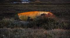 Echouée ... au soleil couchant. (patricia.bardon) Tags: paisajes naturaleza france nature water landscapes boat pentax fotografia ricoh arcachon littoral artofimages pentaxart patriciabardon pentaxk3