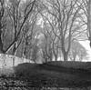 St Ives Estate, Bingley (Richie Rue) Tags: yashicamat tlr medium format 6x6 film:brand=foma film:iso=100 analogue analog landscape mono monochrome blackandwhite vintage retro 120 rollfilm filmdev:recipe=11082 fomafomapan100 film:name=fomafomapan100 film:iso=80