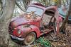 Auto1 (Siggi2409) Tags: germany autofriedhof autofriedhofinnrw nrw auros oldies oldtimer schrott wrack lostplaces rostig alt kurios selten sehenswert liebhaber erstaunlich