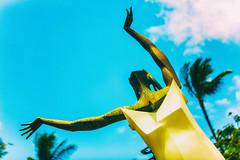The Celebration of Marriage (Thomas Hawk) Tags: celebrationofmarriage grandwailea hawaii hoolauleaohoao kenshutt maui wailea waldorfastoria waldorfastoriagrandwailea palmtree sculpture tree fav10