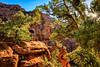 Zion Canyon Photography (KPortin) Tags: zionnationalpark wilbur photographer sunstar trees canyon rocks cliffs