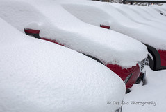 Snow and Cars (PhotoDG) Tags: snow car contrast texture color ef50mmf14usm metrovancouver