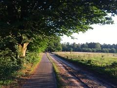 IMG_5372 (marcoderksen) Tags: mtb atb mountainbike veluwe gelderland