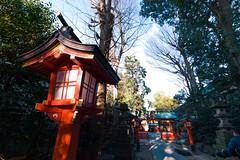 20161229-_DQH0159.jpg (ykgraph) Tags: 東京 foveon 日本 art sdquattroh sdquattro sigma 1224mmf4