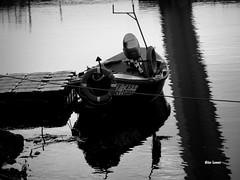 Cais (verridário) Tags: black negro white preto noir monochrome monocromatico mono bianco water boat cais sony bw sombras reflexos reflex mondego rio river figueiradafoz 749