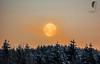 A Wolf Moon.. (© S. D. 2010 Photography) Tags: moon planet setting morning cold frozen winter wonderland snow snowy wolfmoon
