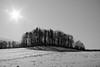XT106401_3 (Radim Seibert) Tags: fujifilm xt10 fujinon ebc 55mm f18 lanscape nature snow winter sunstar bw black white