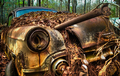 Paradise Rust II (5) (One_Track) Tags: alabama junk car rusty hdr abandoned