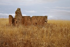 Remnant | Hartley (Daniel Tindale) Tags: ruin house shed church building dry stone drystone grass phalaris cloud sky yellow grey paddock field horizon landscape cloudscape afternoon lonely abandoned derelict decay decayed heritage history icon iconic rural pastoral farm farming farmland country countryside rustic australian native hartley red creek callington road chauncey's line woodchester salem wistow bugle ranges bugleranges roadside adelaide south australia southaustralia sa daniel tindale danieltindale thom sullivan thomsullivan poet poetry poem pentax k20d