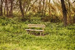 _MG_4728b (Chacho381) Tags: camino pausa relax banco naturaleza