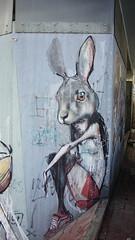 DSC07972 (malte_bau) Tags: streetart 2017 frankfurtmain höchst sony alpha5100 herakut