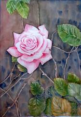 Una rosa y sus espinas (benilder) Tags: acuarela aquarelle watercolor watercolour rosa rose flower floral blumen fleur espinas thorn benilde