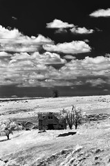 Arikaree Breaks House No. 1 (unknown quantity) Tags: trees sky blackandwhite monochrome field clouds neglect landscape shadows decay horizon hills abandonedhouse infrared weathered utilitypoles shortgrassprairie cloudsstormssunsetssunrises