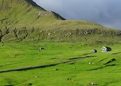 Sunbreak after the rain (Jaedde & Sis) Tags: green sweep faroeislands froyar unanimous gjgv challengeyouwinner challengegamewinner friendlychallenges acfy