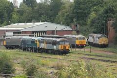 UK Rail, Leicester Depot (Paul Emma) Tags: uk railroad england train leicestershire leicester railway depot ukrail dieseltrain class56 37906 56006 56069 56104 56098 56301