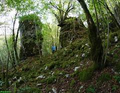 Monolithes haut de falaise des vaux de Refranche (inedit) (francky25) Tags: de des falaise rocher franchecomt haut vaux doubs inedit monolithe refranche