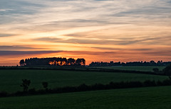 272/365 Zig-Zag (Mister Oy) Tags: sunset sky rural patterns fields z zigzag davegreen billinge oyphotos oyphotos