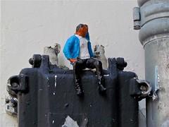 Arjuman  Moving people (Roel Wijnants) Tags: project denhaag pop thuis veilig movingpeople vluchteling vondst roel1943 roelwijnants verplaatsen bootvluchteling hofstijl arjuman roelwijnantsfotografie absolutelythehague haagspraak