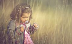 Fascination never ends (Wojtek Piatek) Tags: portrait sun girl grass haze child dress sony tall fascination hay fotografia portret dziewczynka dziecko goldenhours childrenphotography zeiss135 dziecieca