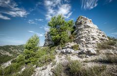 Les Alpilles (Rmi Avignon) Tags: nature provence 13 alpilles