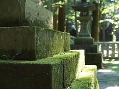 Akagi Shrine (elminium) Tags: japan moss shrine akagi gunma akagishrine dmcg1