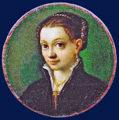 journal of sofonisba anguissola essay Result for essay evangelism  ' is among the unique pious narrative paintings by italian painter sofonisba anguissola  american educational history journal.