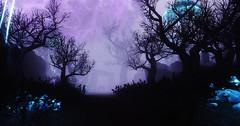 Tirashan (rinjasofia) Tags: graphics screenshots gaming tes modding mods enb elianora skyrim screenarchery tirashan