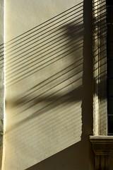 Non-existing lines (mikael_on_flickr) Tags: italien italy detail muro lines wall italia shadows wand ombre verona particolare veneto linee nonexisting linjer detalje skygger nonexistinglines detiaglio